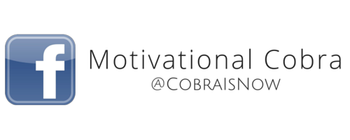 ZeroKnight Website FB Motivational Cobra